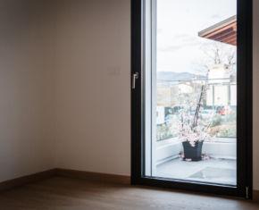 terrace_window_plant